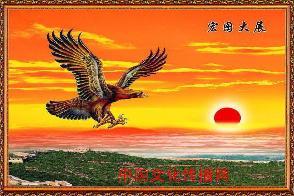 传统文化(雄鹰展翅美图)